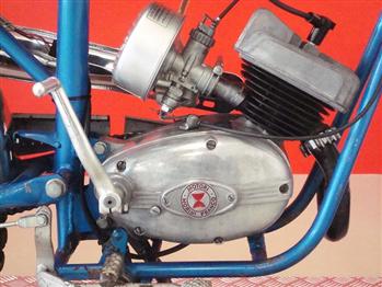 Moto MULLER 50